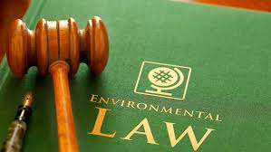 7506LAW International Environmental Law Essy-Griffith University Australia.
