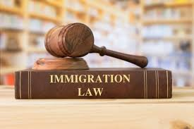 LAWS503 Migration Law Assignment-Australia